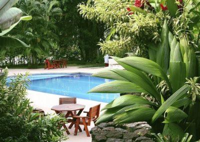 best swimming pool design dry ridge ky