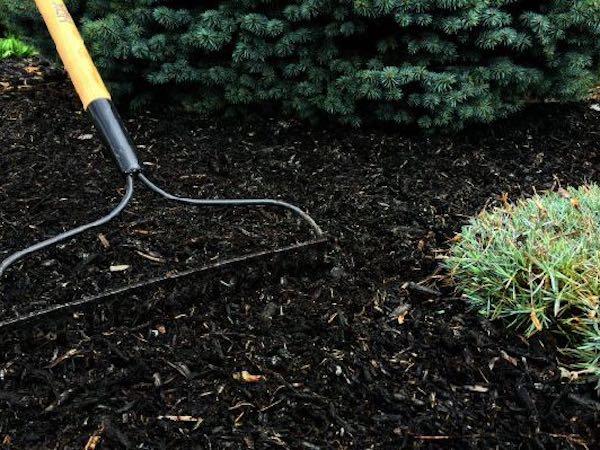 landscaping mulch application dry ridge ky