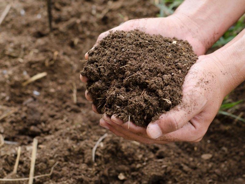 landscaping soil pretreatment dry ridge ky